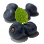 acai berry supplements1 150x150 - Raspberry Ketone Complex