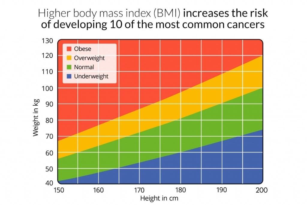 higher bmi increases cancer rates 1024x683 - Ny studie visar att högre kroppsmassindex (BMI) ökar risken för att utveckla 10 av de vanligaste cancrarna