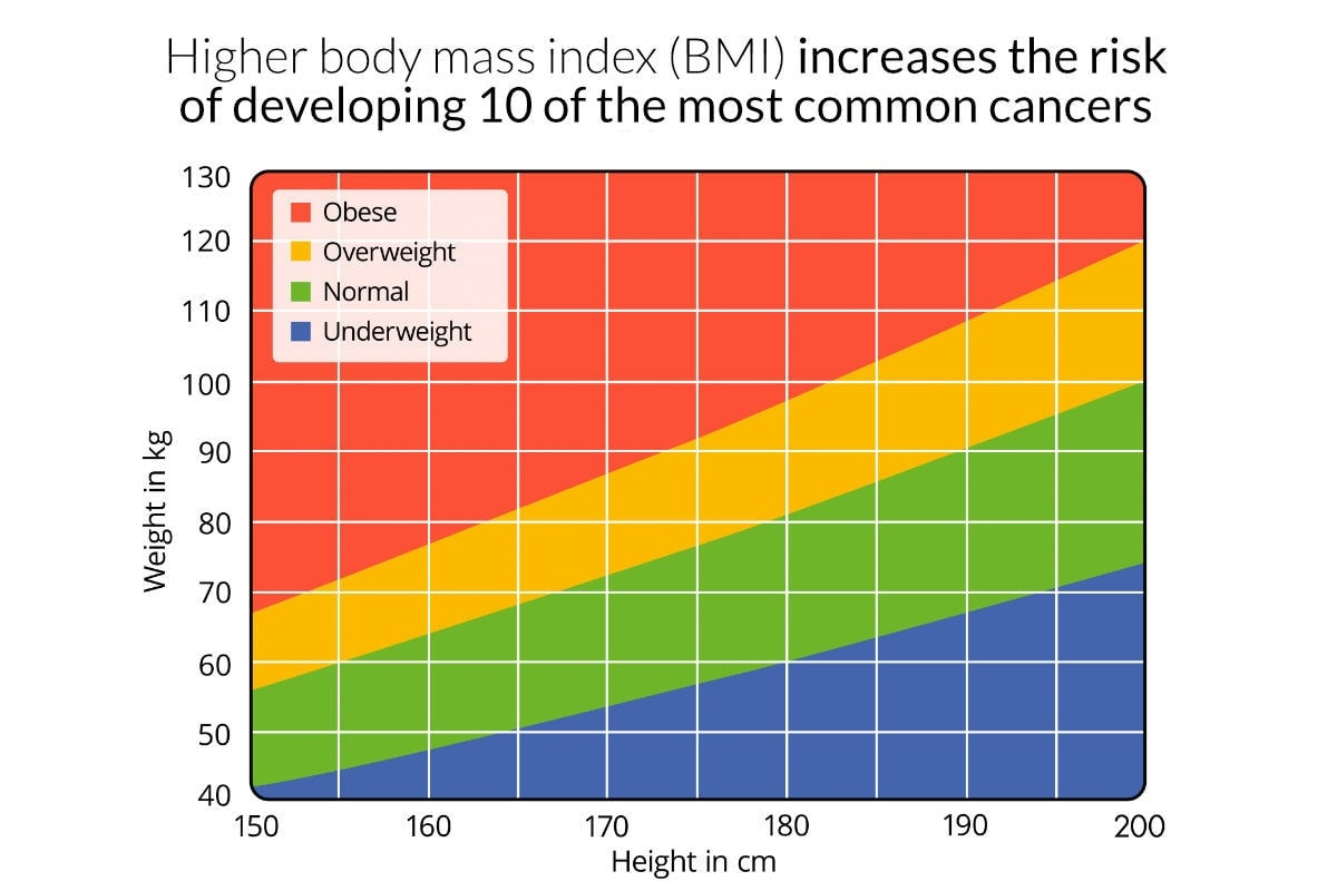 New study finds that a higher body mass index BMI increases the ...