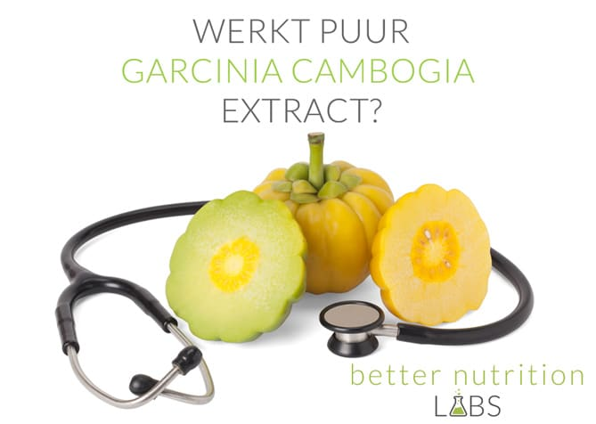 the doctors show pure garcinia cambogia