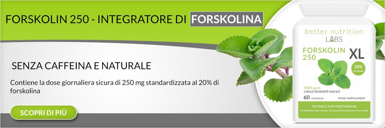 estratto di forskolina coleus forskohliiz