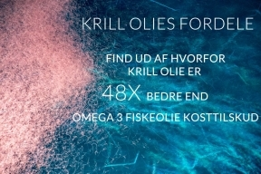 Krill Oil Benefits Find out why Krill Oil is 48X better than Omega 3 Fish Oil supplements DA 288x192 - Antarctic Krill Oil (Antarktisk Krill Olie)