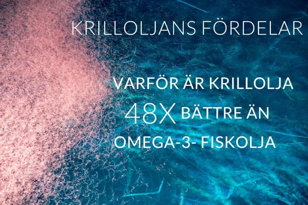 Krill Oil Benefits Find out why Krill Oil is 48X better than Omega 3 Fish Oil supplements SV 1024x683 - Krilloljans fördelar - Ta reda på varför krillolja är 48X bättre än fiskolja som omega-3-tillskott