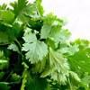 mini parsley - Supergreens Complex - 2 Månader Leverans