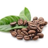 caffeine 200 - Etude : Quels sont les meilleurs brûleurs de graisse thermogéniques naturels ?
