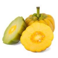 garcinia 200 - Etude : Quels sont les meilleurs brûleurs de graisse thermogéniques naturels ?